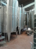 Starosel Winery-Bulgaria_6